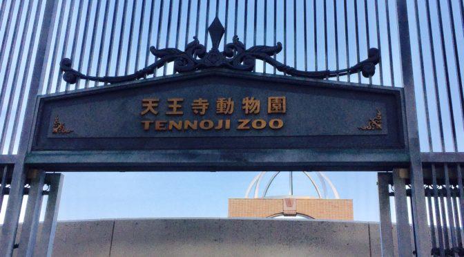 天王寺動物園、V字業績回復には個性を生かした仕掛作りだなぁ?