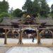 夏越の祓の「水無月」って、和菓子は、なぜ三角形なの?